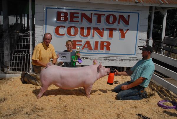 2015 Benton County Fair Swine Show