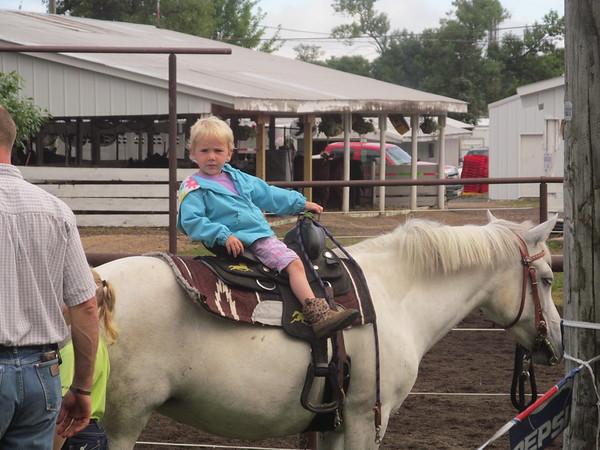 2015 Benton County Open Horse Show